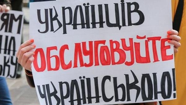 """""""Охорона — скасування"""" заставят говорить через полтора года, а сайты украинизируют через 36 месяцев"""