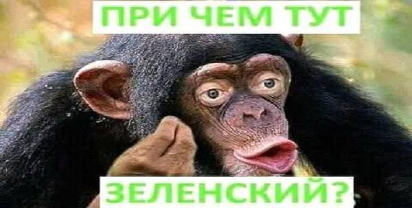 """Київський апеляційний суд відпустив під домашній арешт """"беркутівця"""" Шаповалова, обвинуваченого в розстрілах на Майдані - Цензор.НЕТ 4792"""
